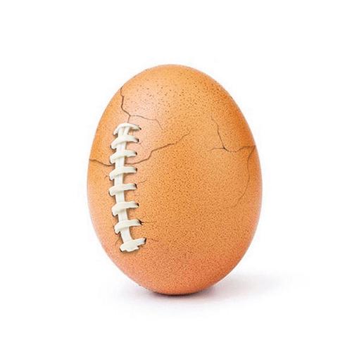 world_record_egg