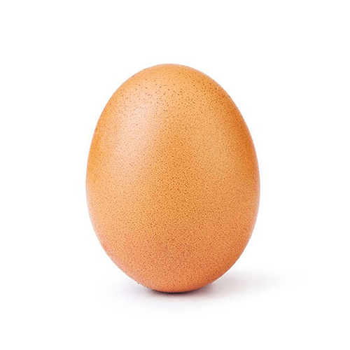 Аккаунт @world_record_egg фото и видео из инстаграм - Подтвержденный